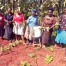 KINUNGA WOMEN GROUP 2
