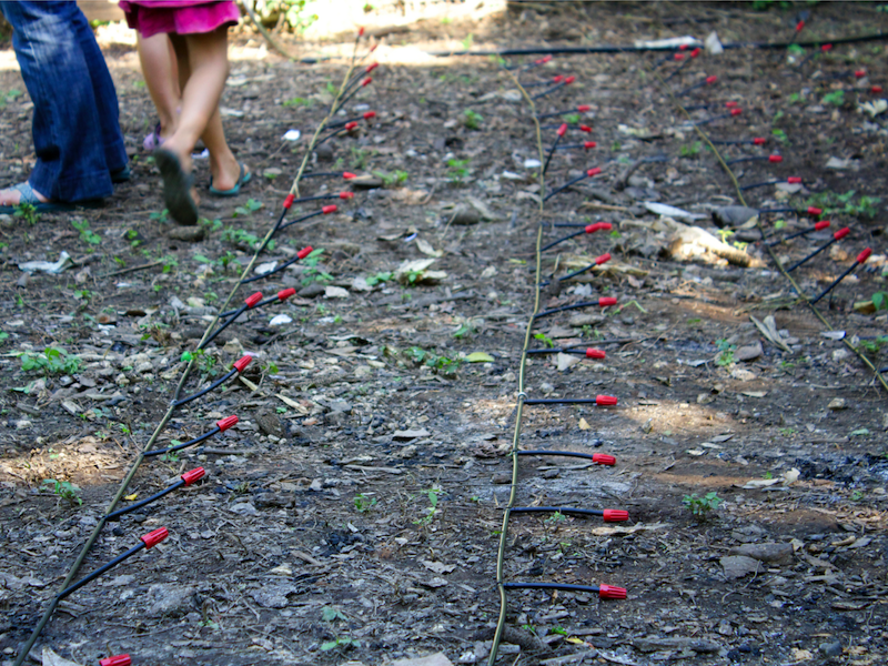 drip irrigation in el salvador
